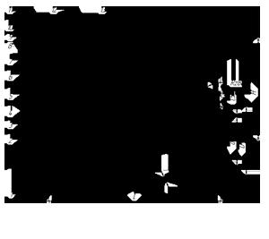 Клапаны обратные поворотные 19с76нж под приварку